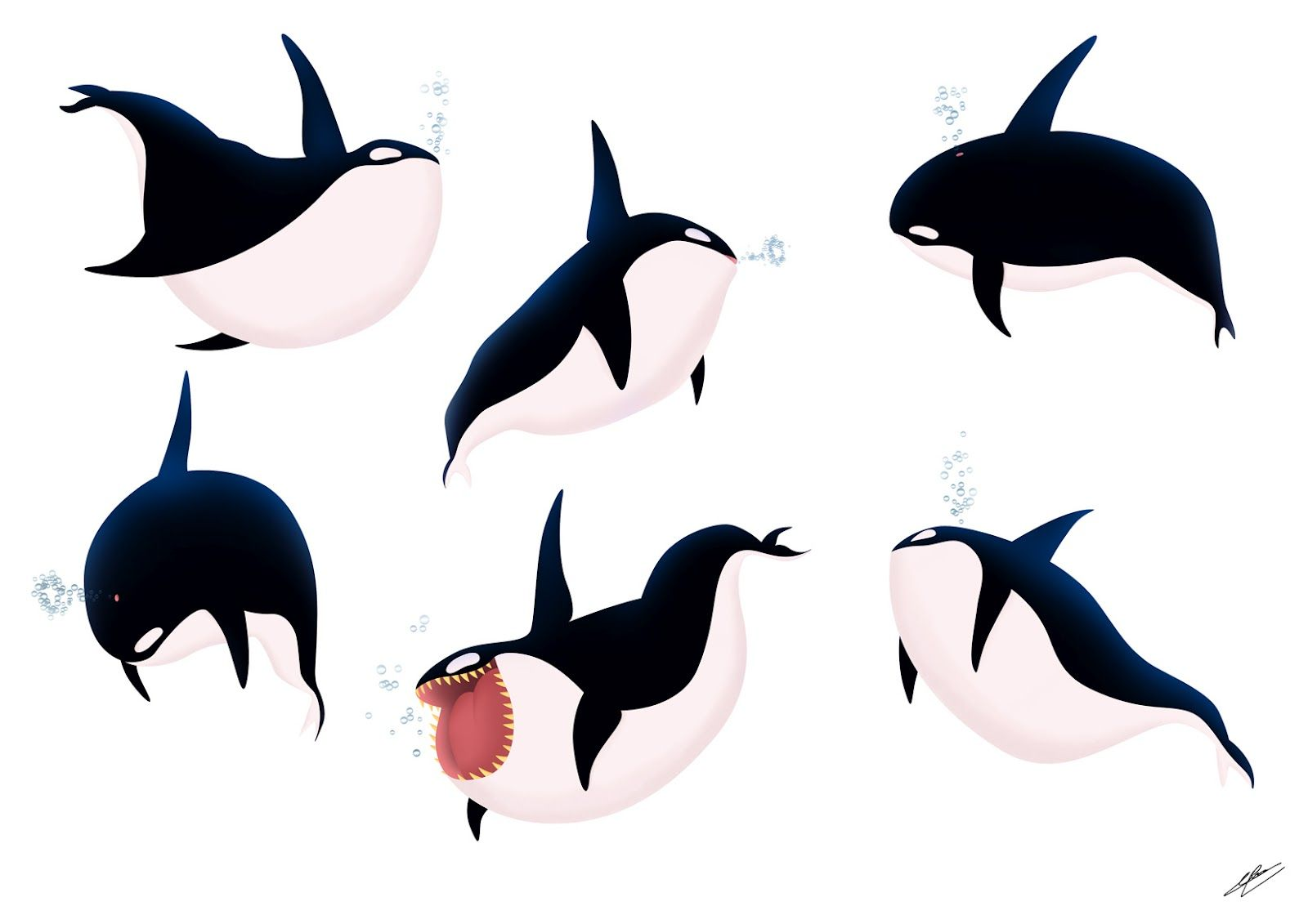 How To Draw A Killer Whale Cute | www.imgkid.com - The ...