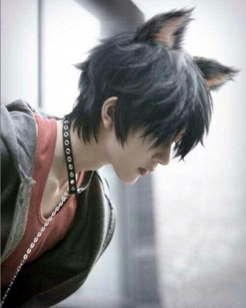 Resultado De Imagen Para Cool Anime Hairstyles In Real Life Anime Cosplay Neko Boy Katzenohren
