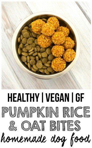 Kibble Topper Recipe Crunchy Pumpkin Rice N Oat Bites Dog