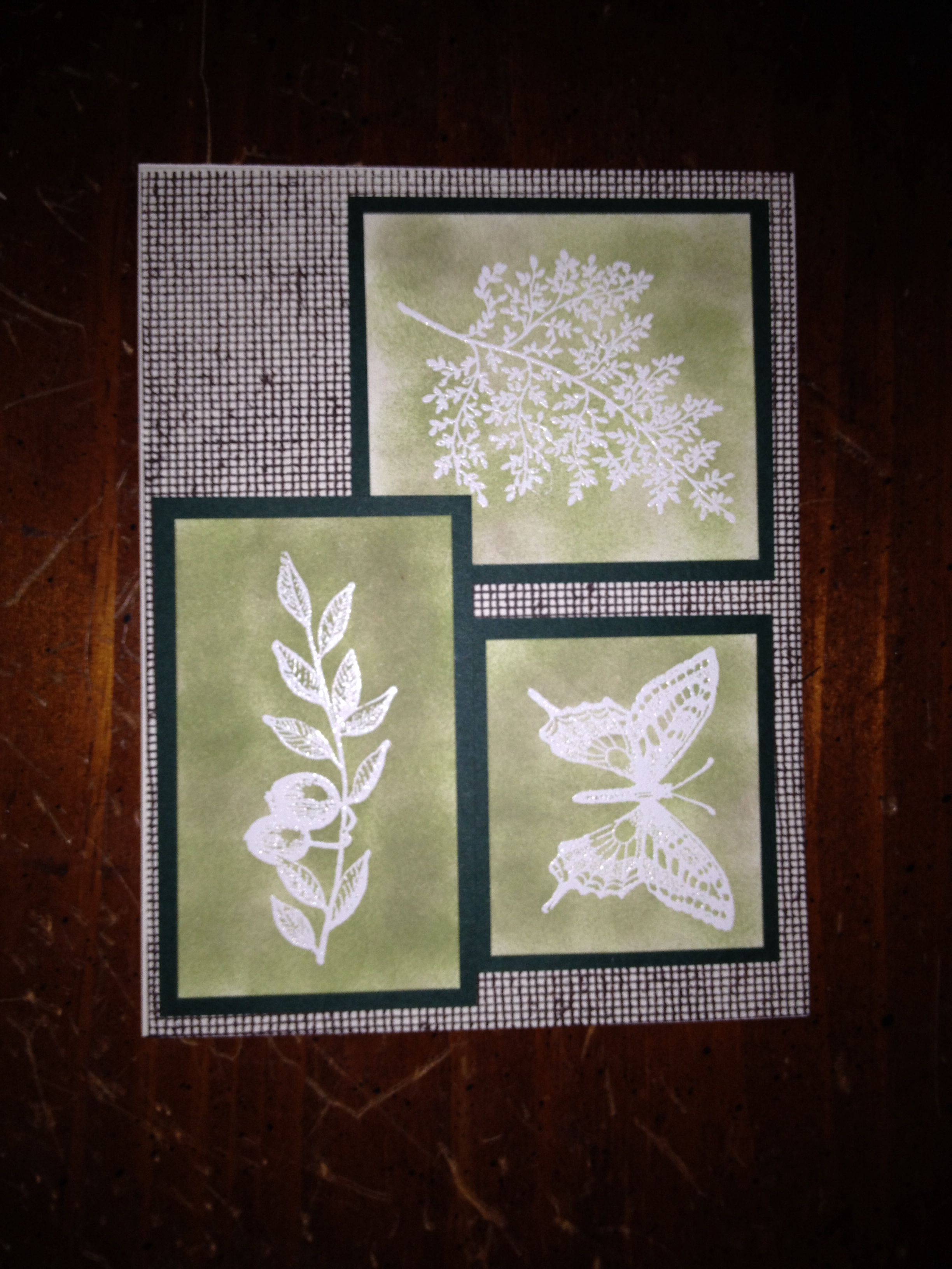Stampin' Up! Touch of Nature
