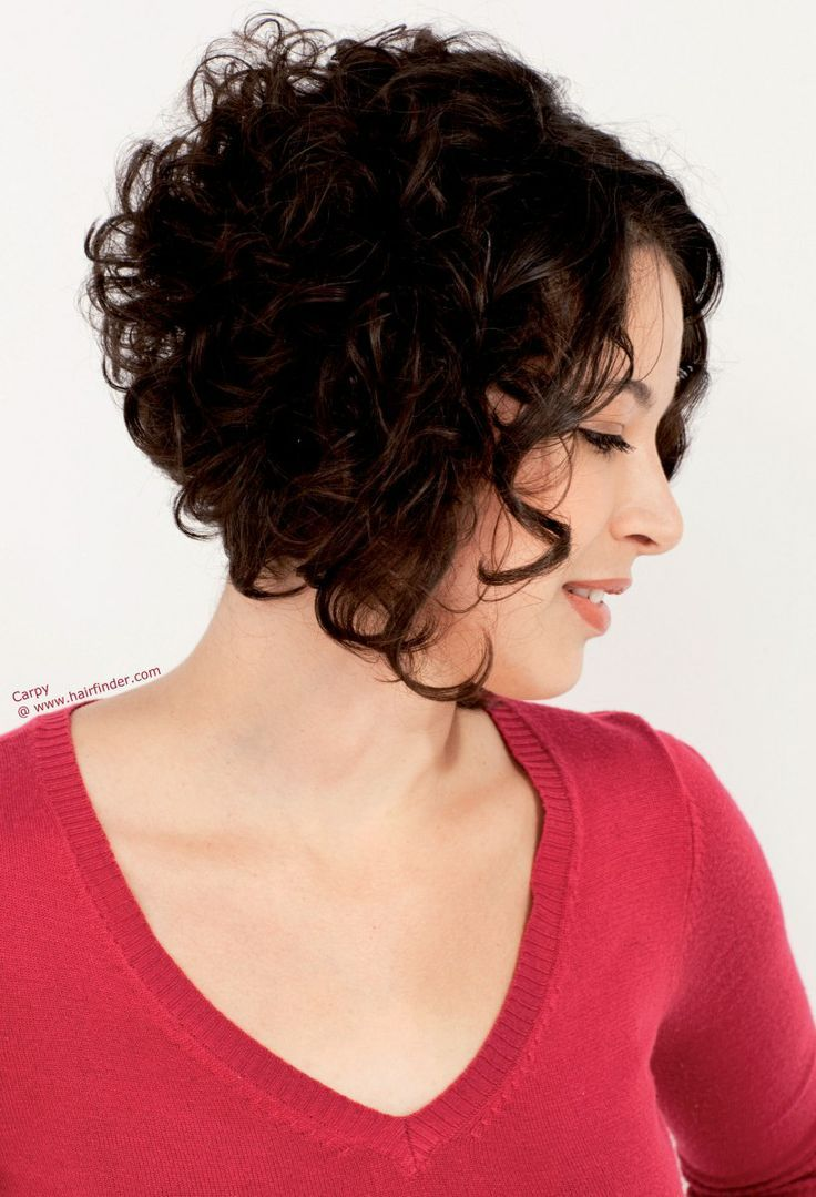 Curly Hair Short Back Long Front Google Search Curly Hair Cuts