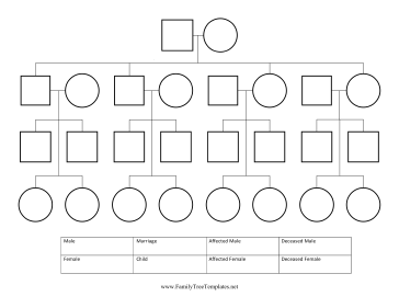 Pedigree Chart Template Pedigree Chart Family Tree Project Family Tree Chart