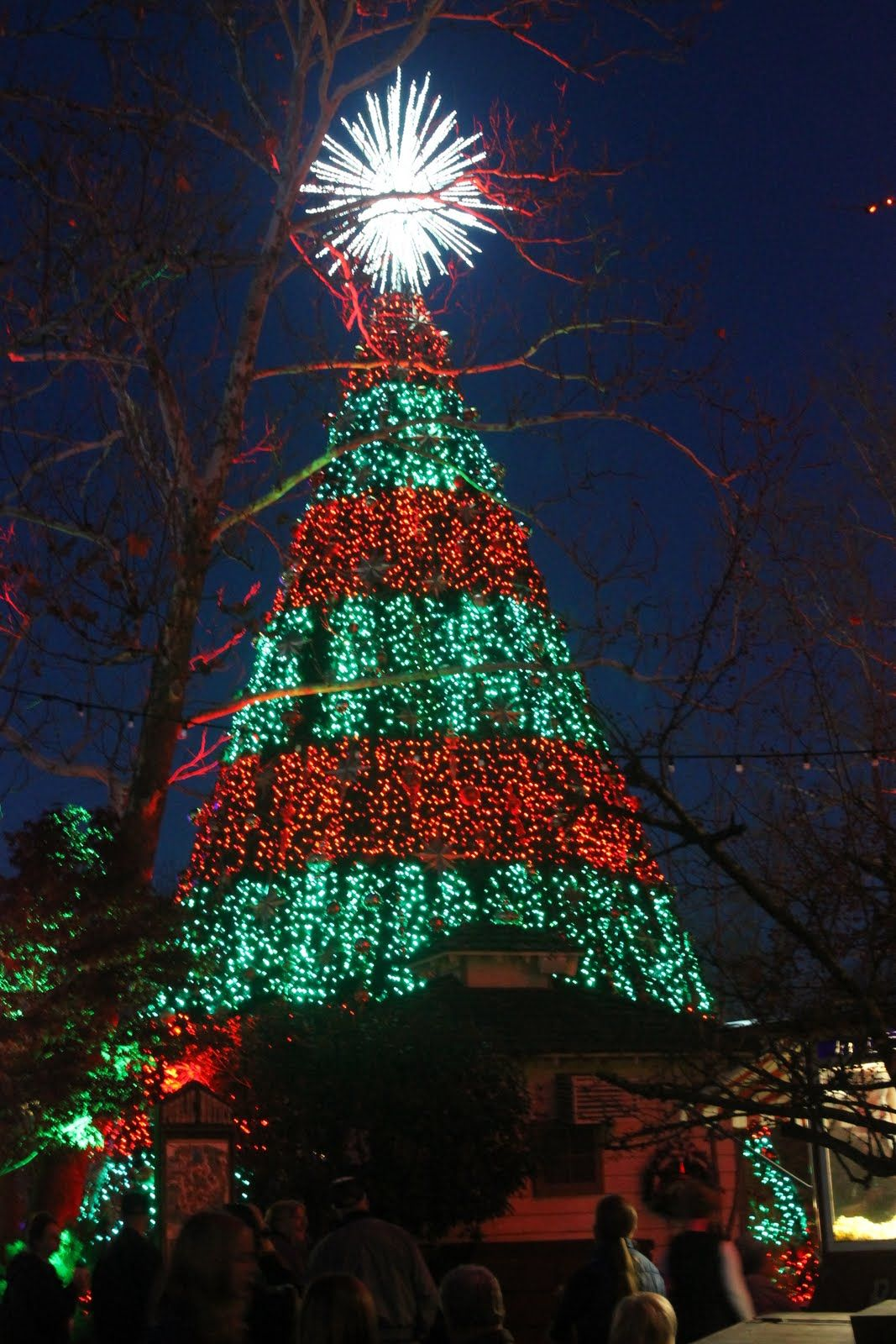 Hanging With The Hoofs Silver Dollar City Christmas Lights Christmas Lights Silver Dollar City Christmas In The City