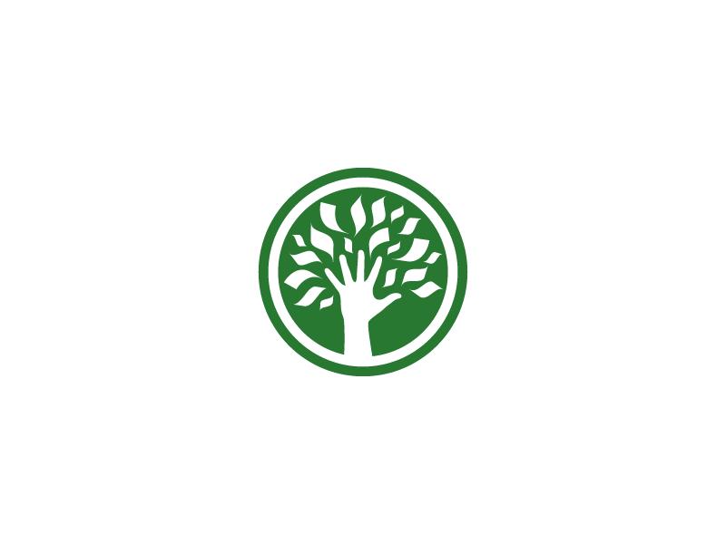 Money Tree Logo Tree Logos Money Logo Tree Logo Design