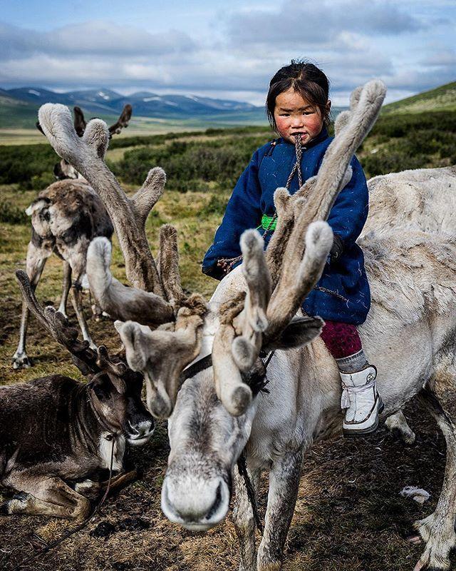 Mongolia's Mystical Tsaatan Reindeer People - NOMADasaurus ...