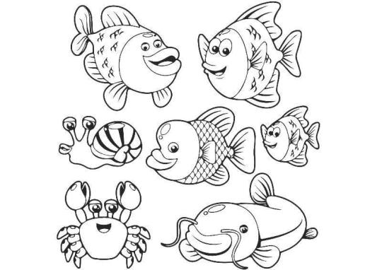 تعليم الرسم للاطفال كيف ترسم سمكة Drawing For Kids Fish Drawings