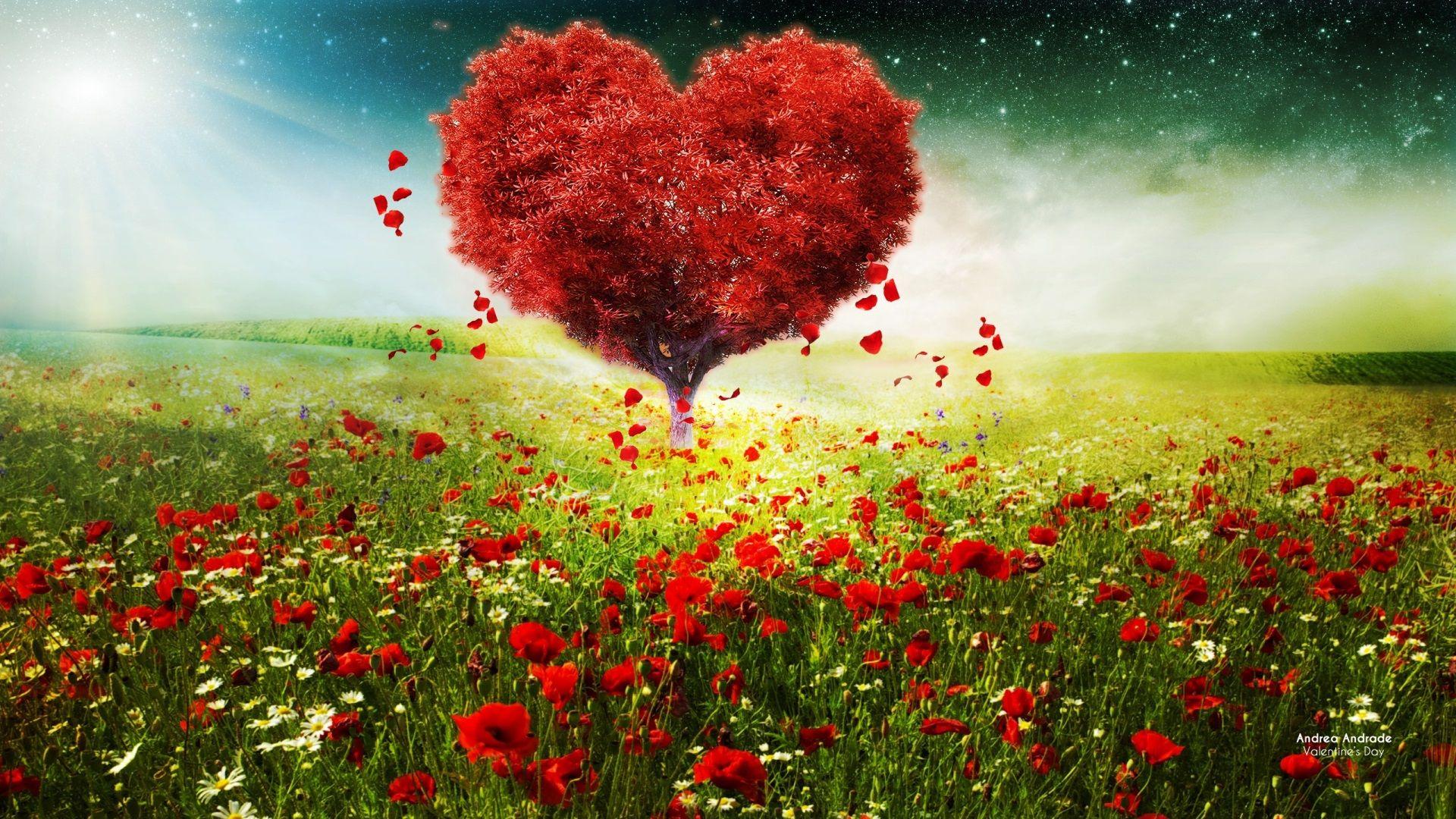 1920x1080 Love Heart Beautiful Wallpapers Landscape Trees Beautiful Wallpapers Love Wallpaper