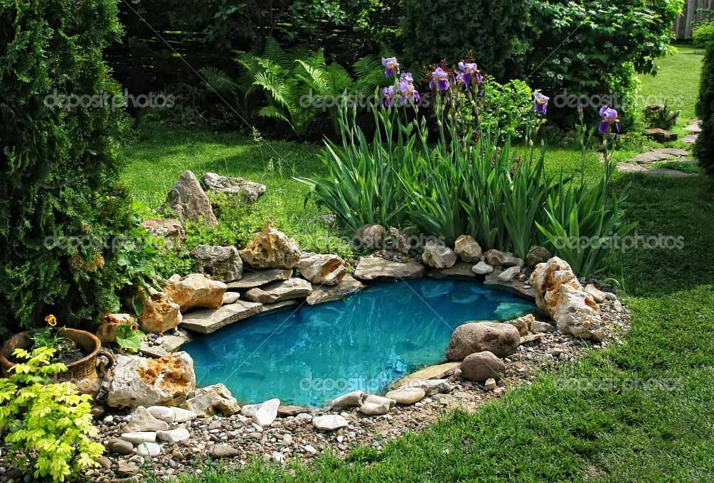17 Best images about fish ponds on Pinterest Gardens Pond ideas