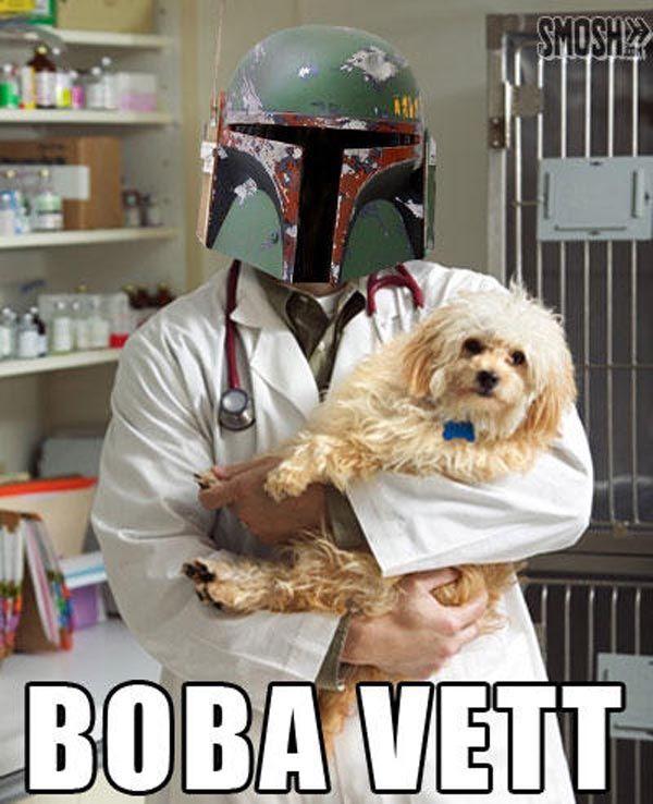 28 Star Wars Puns So Dumb You Ll Feel Bad For Laughing Star Wars Puns Star Wars Memes Star Wars Humor