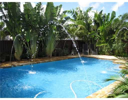 Pool Area With Privacy Fence And Lush Tropical Traveler