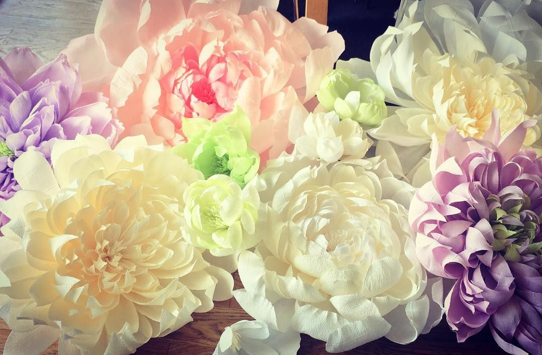 A small selection of large crepe paper flowers i am creating for a a small selection of large crepe paper flowers i am creating for a big window display crepepaperflowers crepepaper handmade cartotecnicarossi mightylinksfo