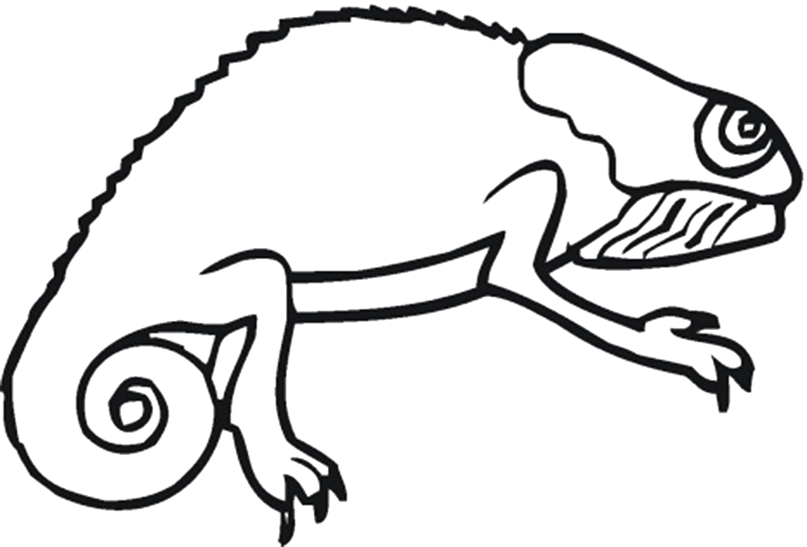 Reptile Coloring Pages Coloring pages, Turtle coloring