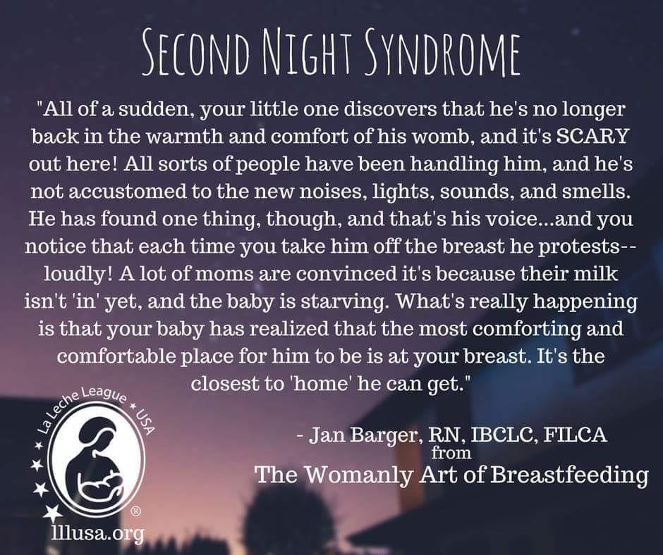 Pin on Breastfeeding Memes