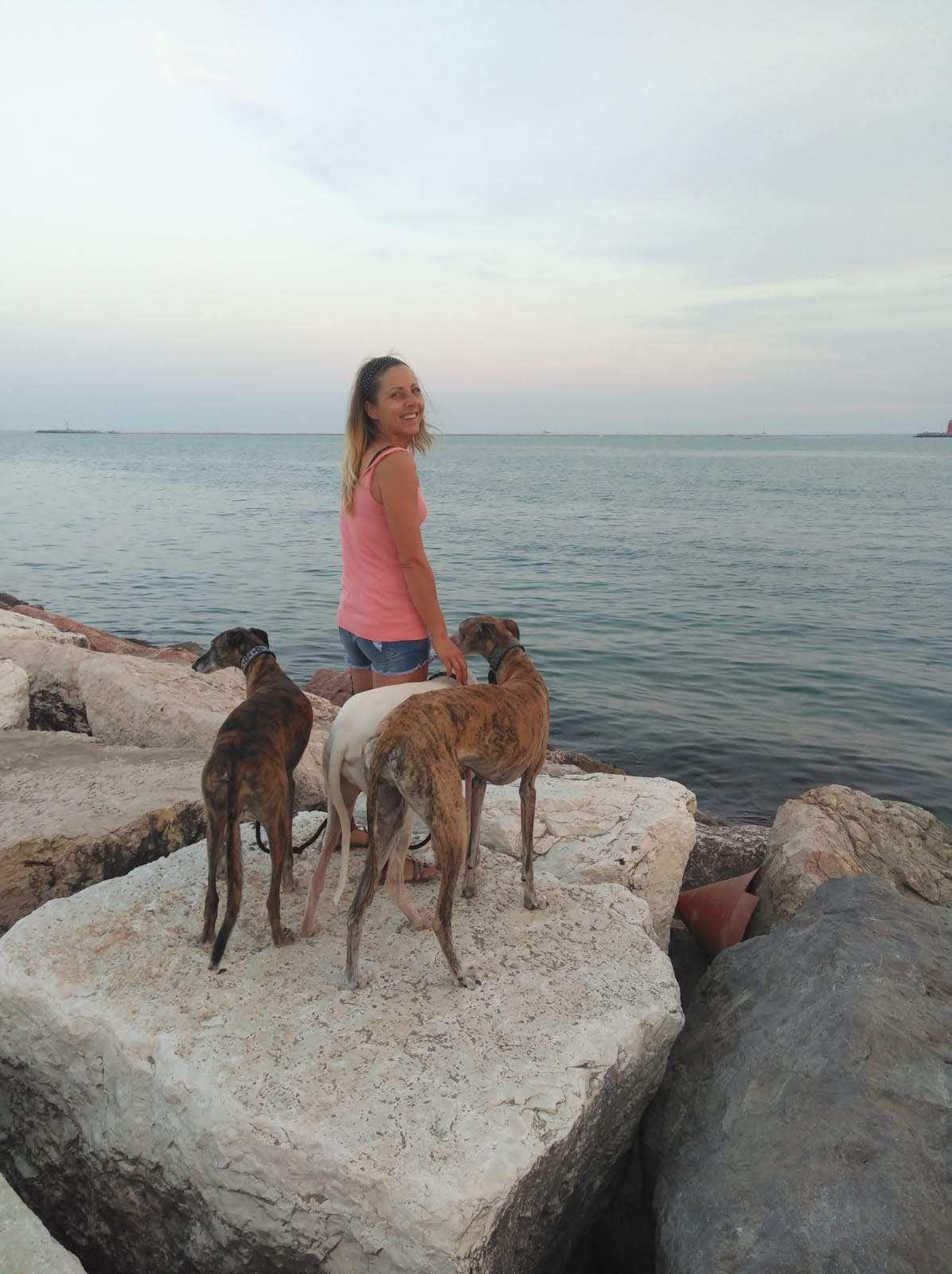 Urlaub Hund Italien Bungalow Strand Hundefreundlich Urlaub