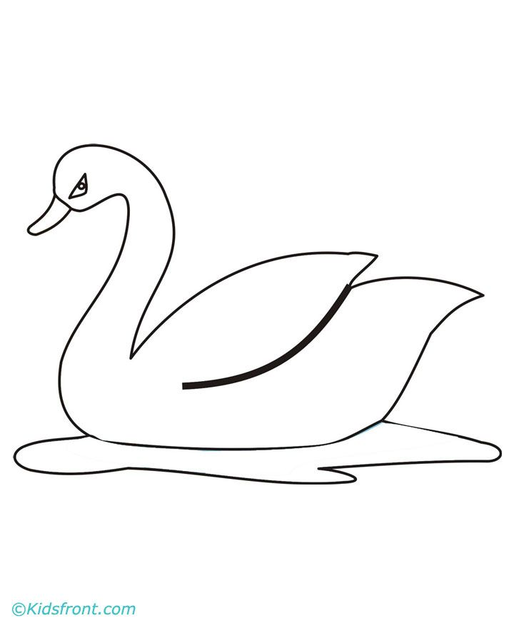 swan drawing google zoeken