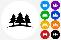 Three Trees Icon on Flat Color Circle Buttons vector art illustration