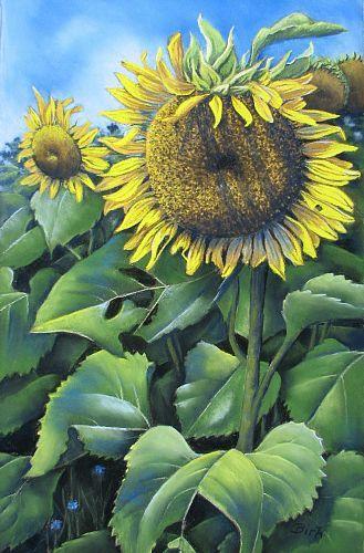Kerstin Birk Watercolor