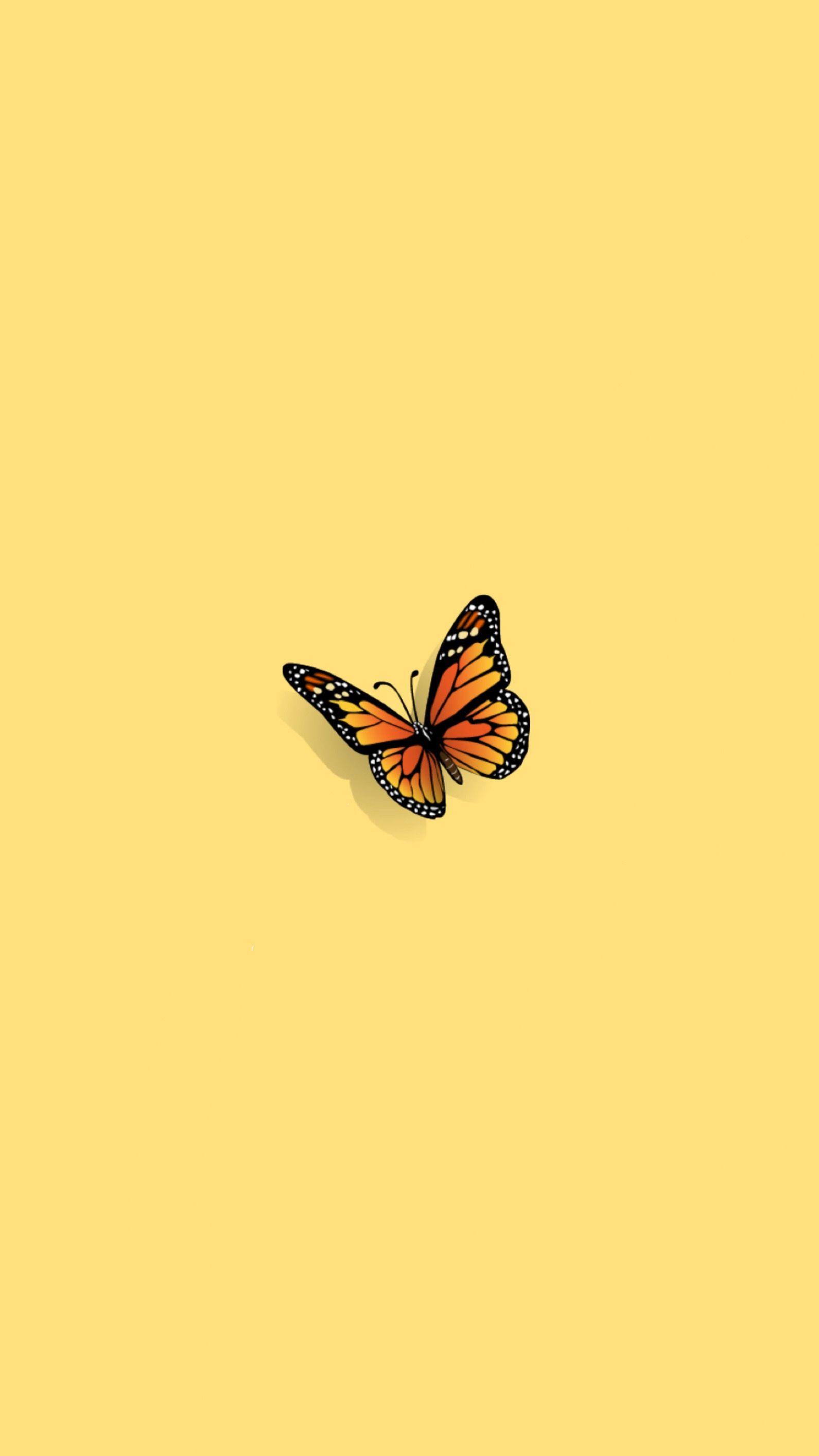 Cute Yellow Butterfly Wallpaper