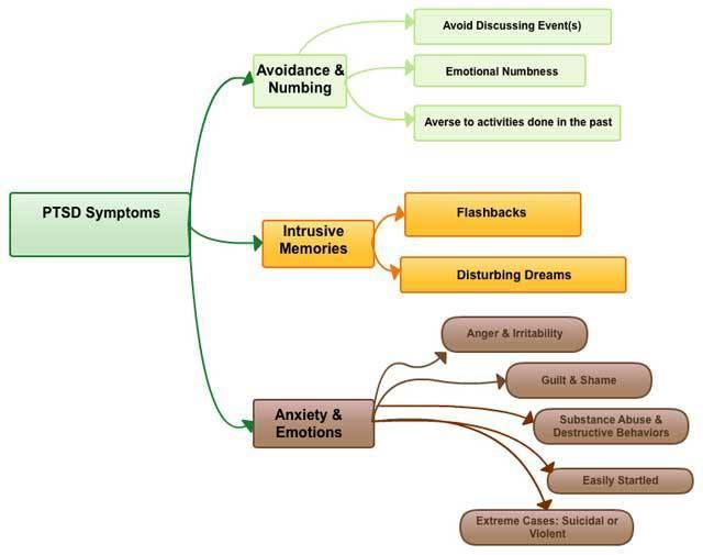 Ptsd Signs And Symptoms Flow Chart The Battle Buddy Foundation