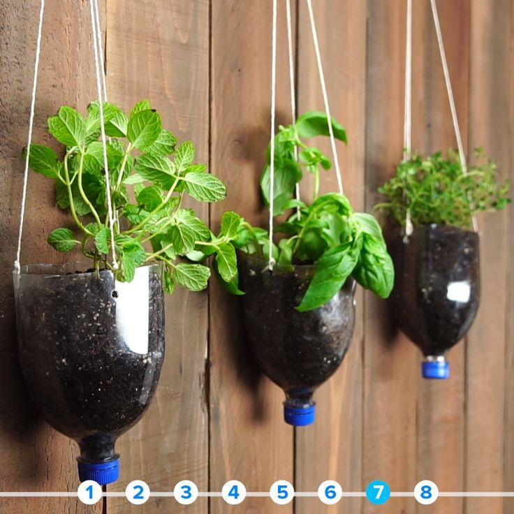 24 Indoor Herb Garden Ideas To Look For Inspiration: 8 Things You Can Upcycle Into