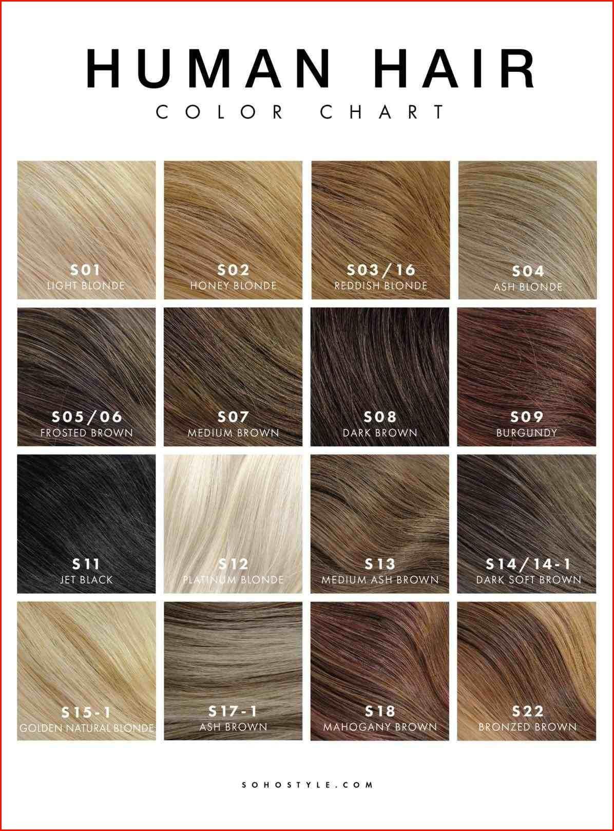 Cool Light Golden Brown Hair Color Chart Photos Of Hair Color Ideas Di 2021 Ide Warna Rambut Warna Rambut Pirang Warna Pewarna Rambut