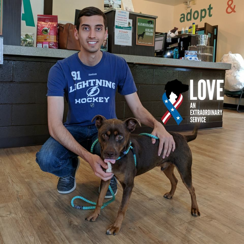 3 Year Old Moe Was Recently Adopted To Andrew Active Duty Navy Through Our Partnership With Virginia Beach Spca Petsforpatriots Animal Companions