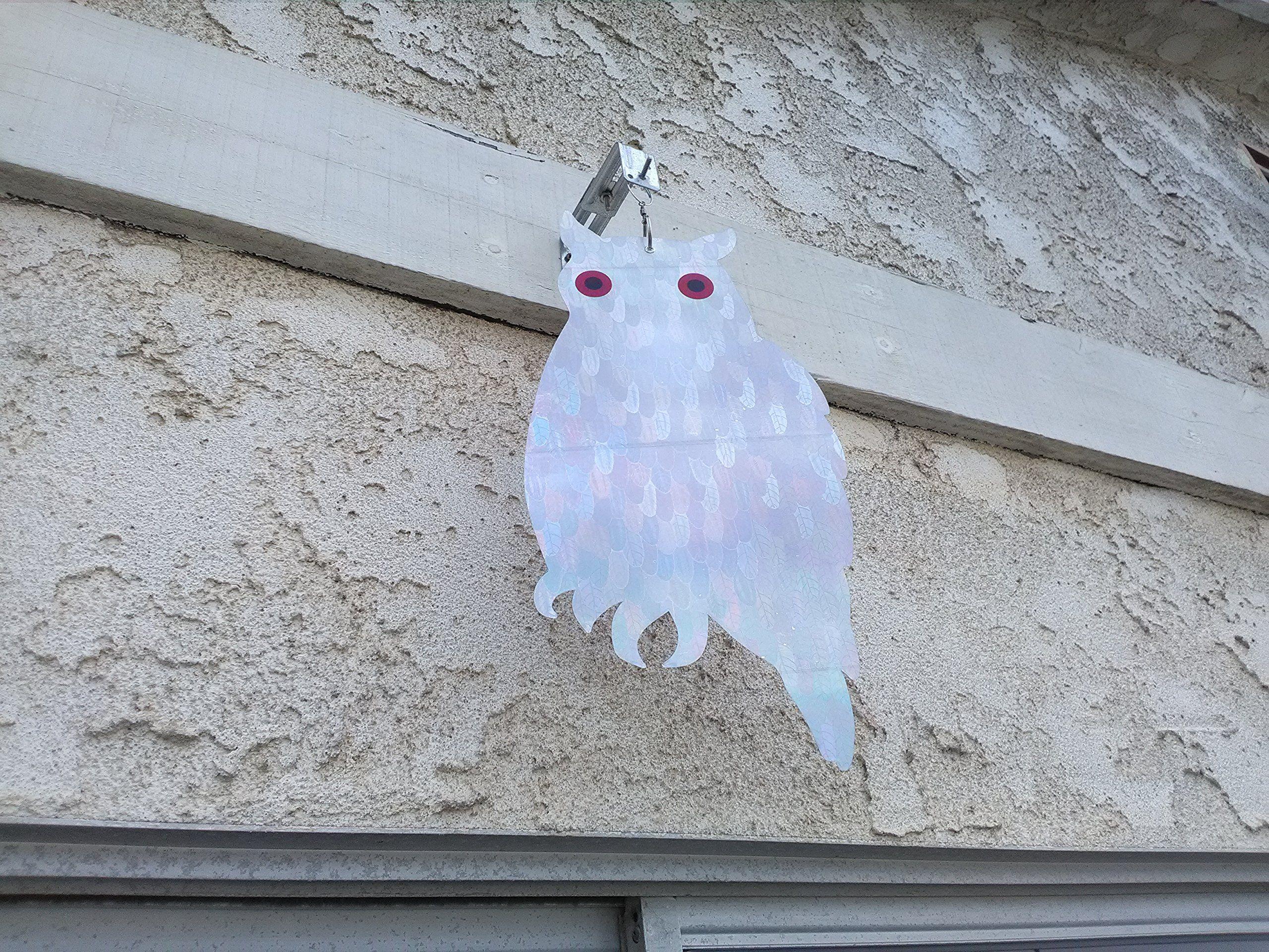 Birdbusters holographic owl bird deterrent scares birds