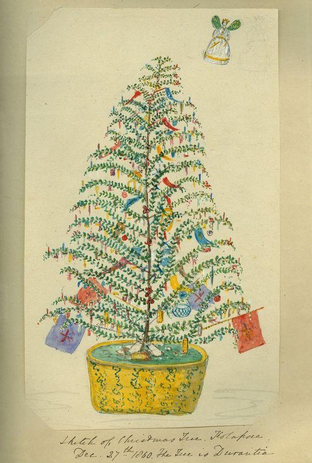 Sketch of Christmas tree, Kolapore, Dec. 27th 1860 • Sidney James ...