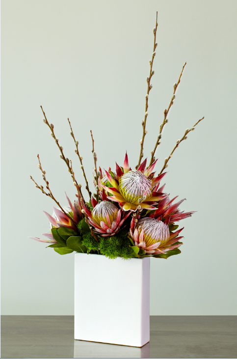 Modern King Protea And Pussy Willow Arrangement Florals Pinterest Protea Centerpiece