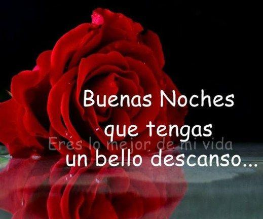 Imagenes De Flores Con Frases De Buenas Noches Flor Pinterest