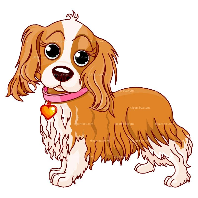 Clipart Dog Cocker Spaniel Royalty Free Vector Design Cani