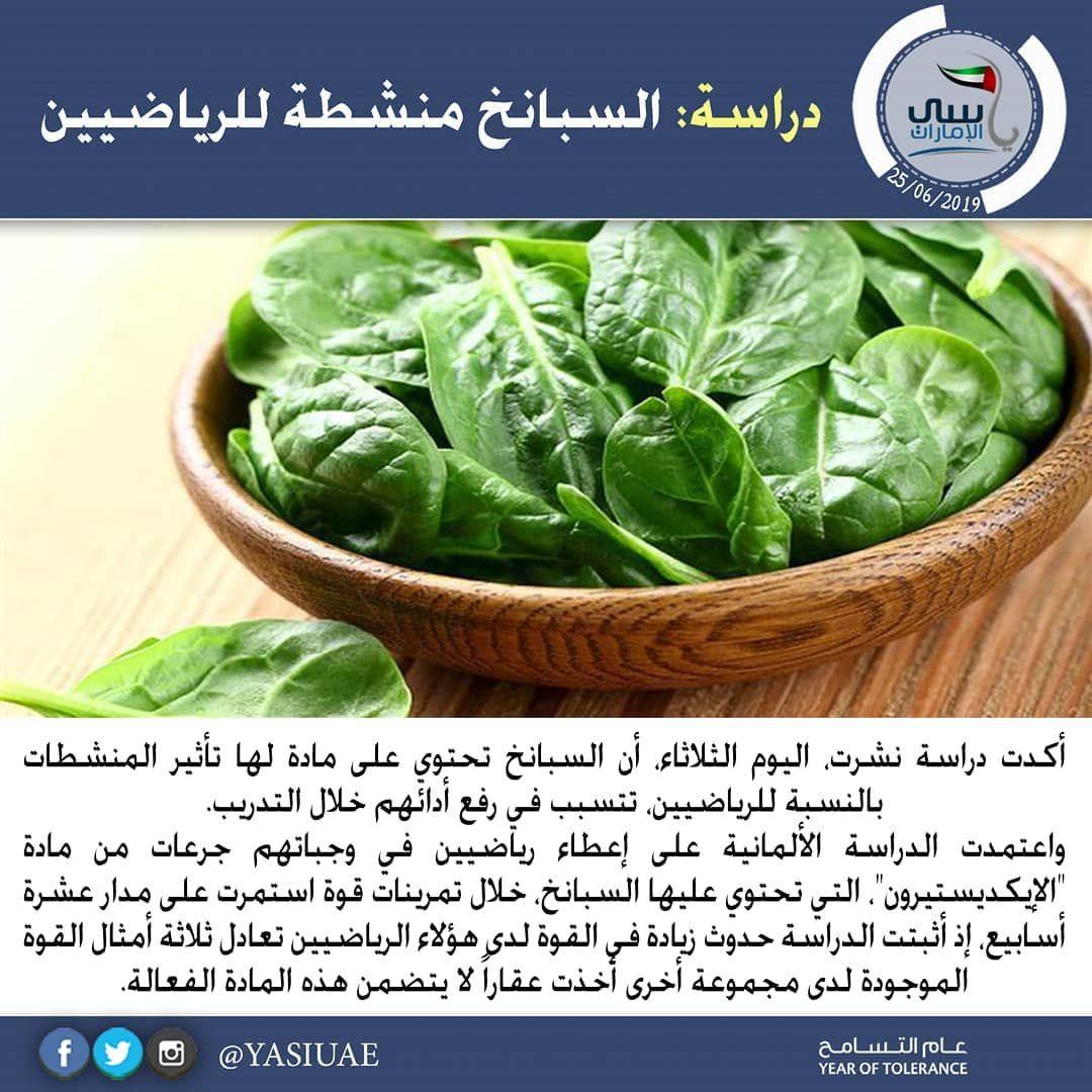 معلومات صحيه دراسة السبانخ منشطة للرياضيين أكدت دراسة نشرت اليوم الثلاثاء أن السبانخ تحتوي على مادة لها تأثير المنشطات بالنسبة ل Food Cabbage Vegetables
