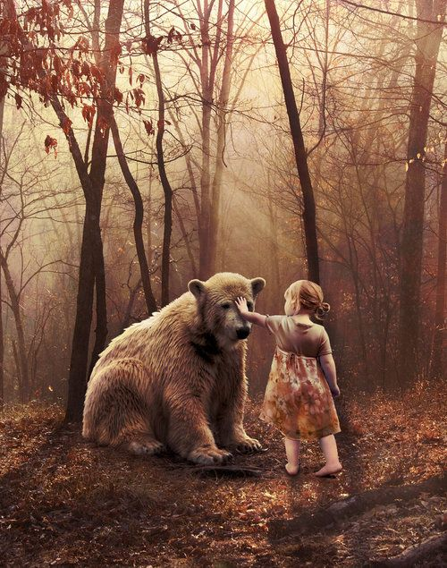 I am terrified of bears but this picture pulls me to it ... - photo#13