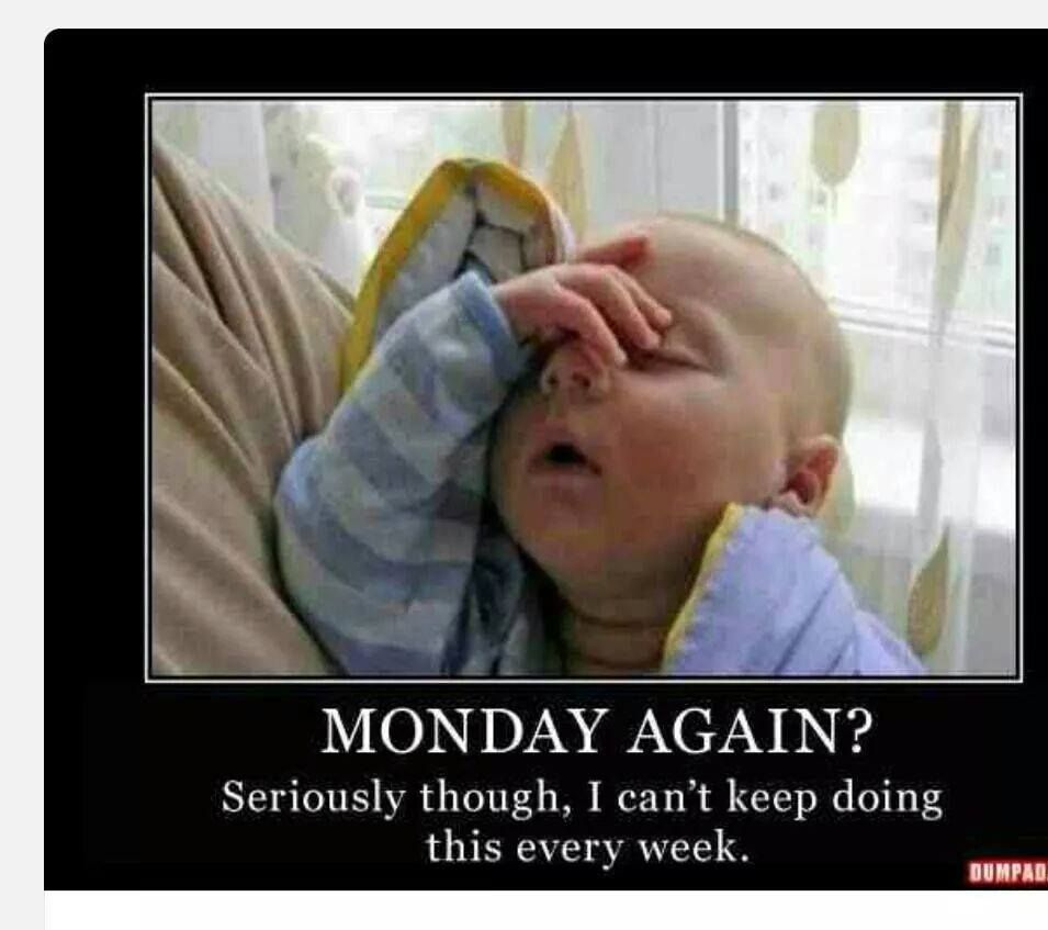 It S Back Again Funny Baby Memes Tomorrow Is Monday Funny Babies