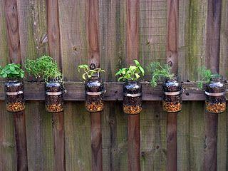 Mason Jar Herb Garden On The Fence