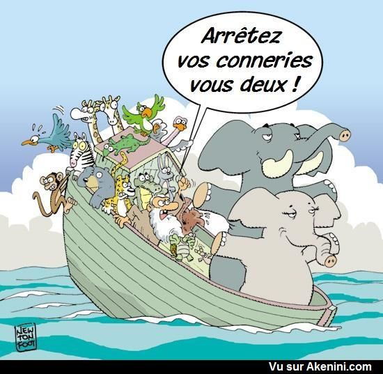 Akenini Com C Est 100 Humour Le Site D Humour Le Plus Complet Au Monde Images Droles Drole Image Drole Animaux