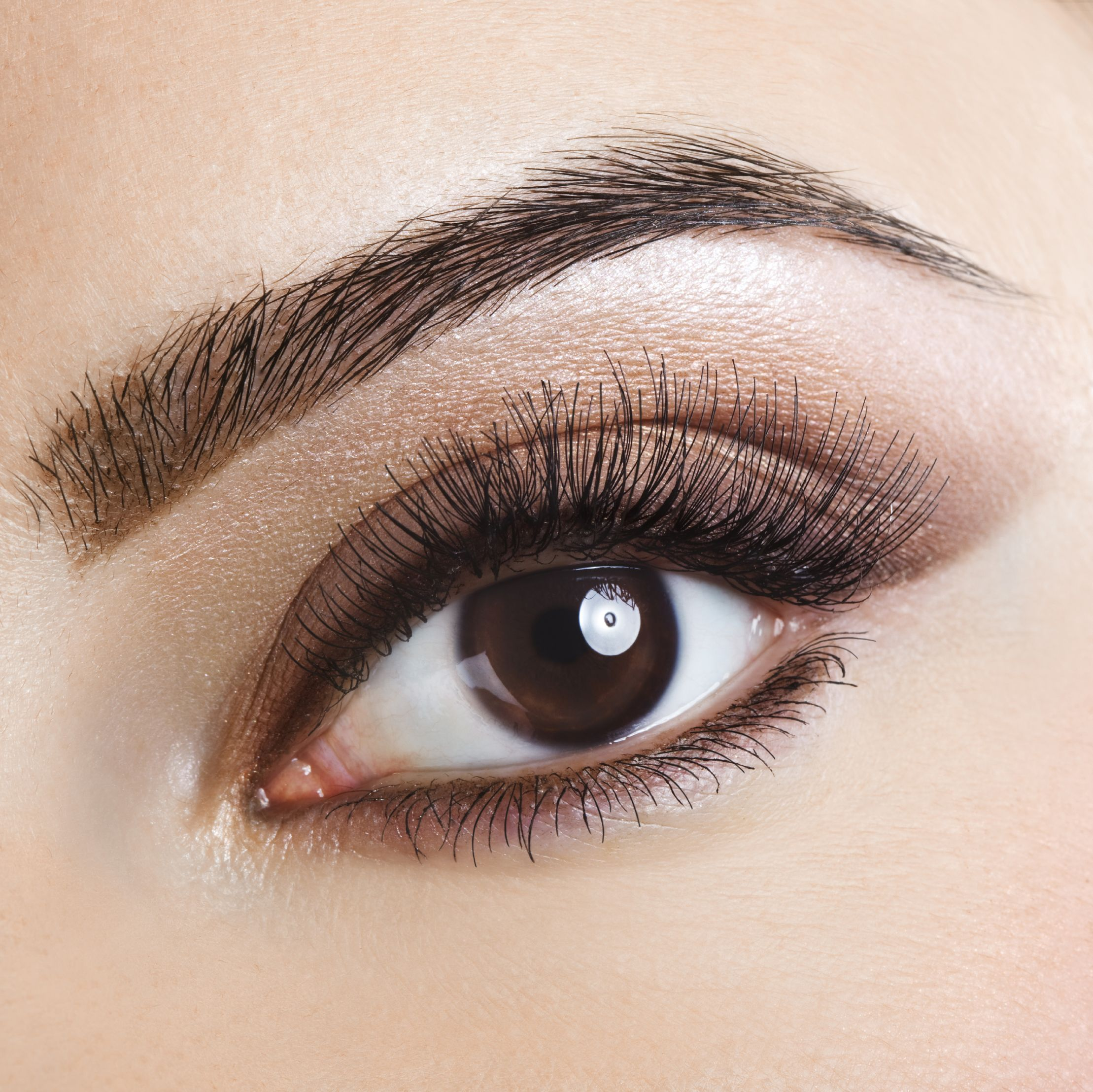 Beautylines Wimpernserum Beautylines Wimpernserum Pinterest