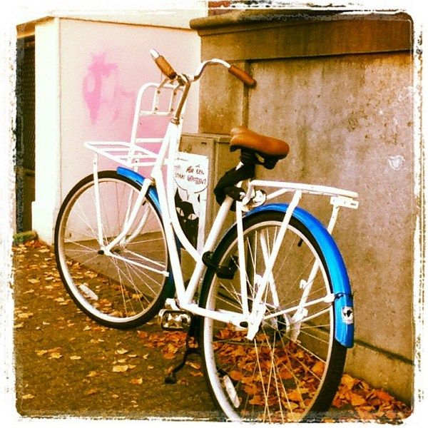 The Bicycles of Amsterdam via Beers & Beans