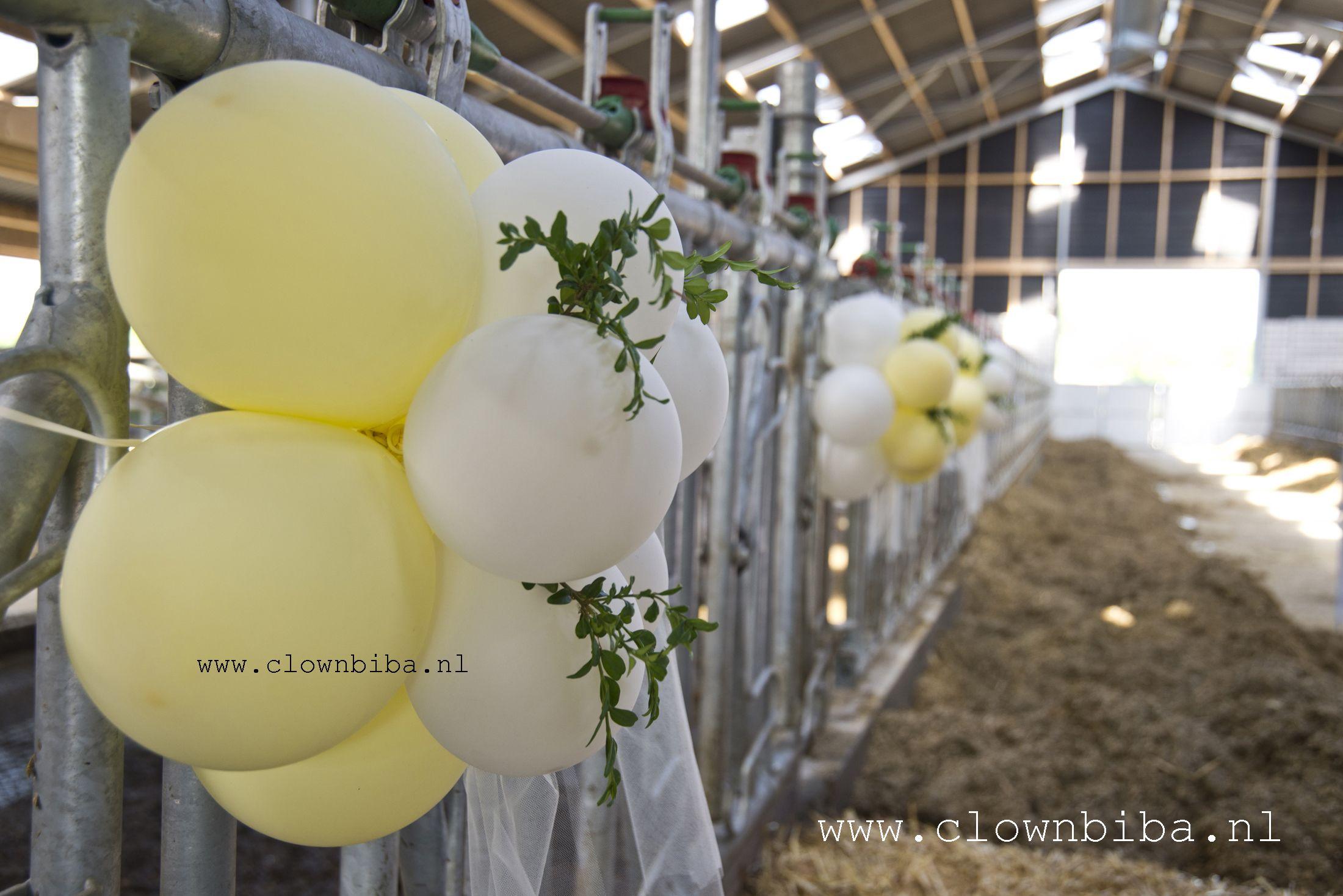 decoratie bruiloft in een koeienstal