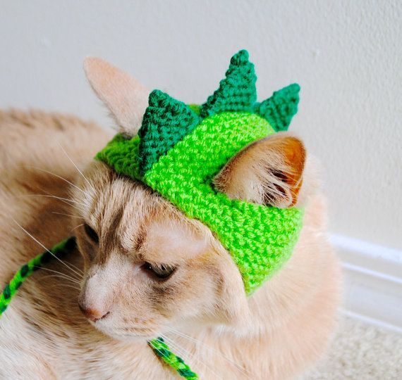 Dinosaur Cat Hat Green And Lime Hand Knit Cat Hat Cat Halloween Costume Crochet Cat Hat Crochet Dog Crochet Dog Sweater