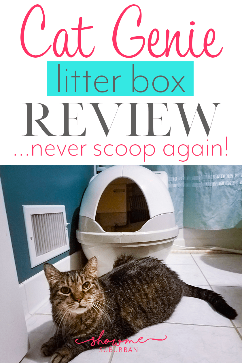 Cat Genie Litter Box Review The Only Box You'll Ever Need