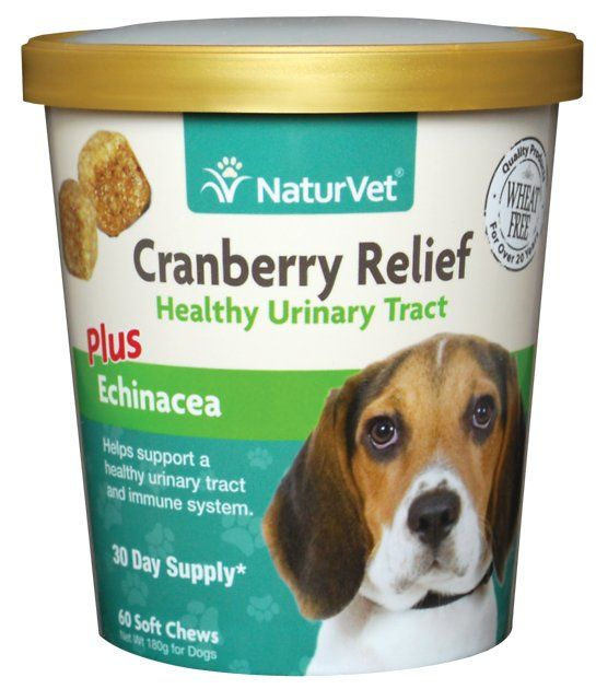 NaturVet Cranberry Relief Plus Echinacea Soft Chews for