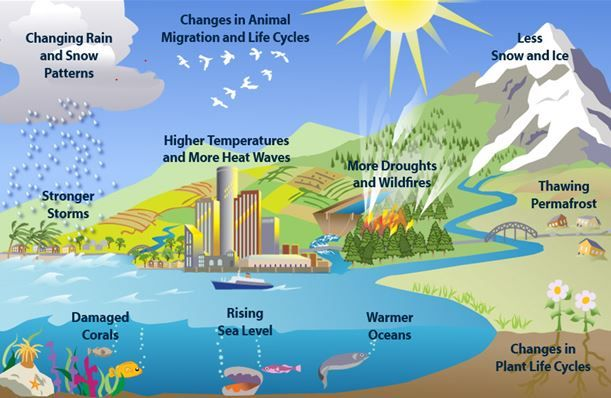 Diagram of climate change google search alternative environment diagram of climate change google search ccuart Gallery
