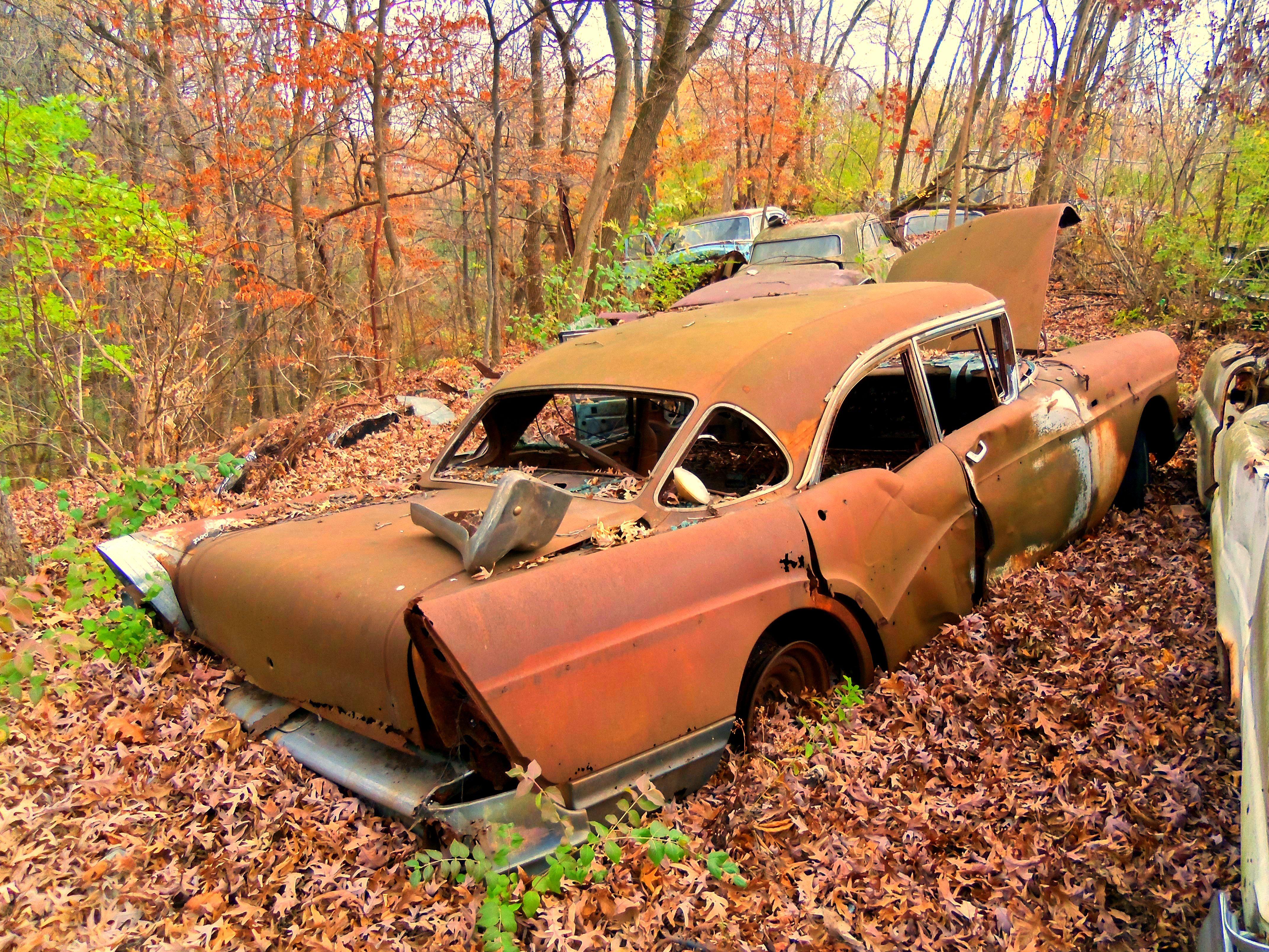 cool old junkyard