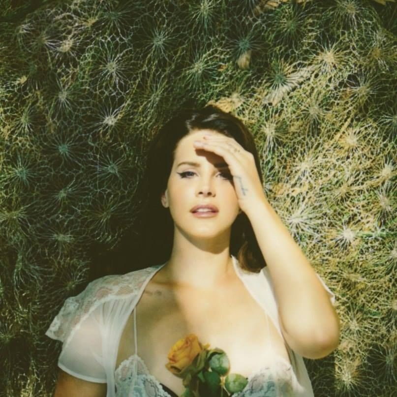 Vibrant Photography By Neil Krug Lana Del Rey Photoshoot Lana Del Rey Honeymoon Lana Del Rey
