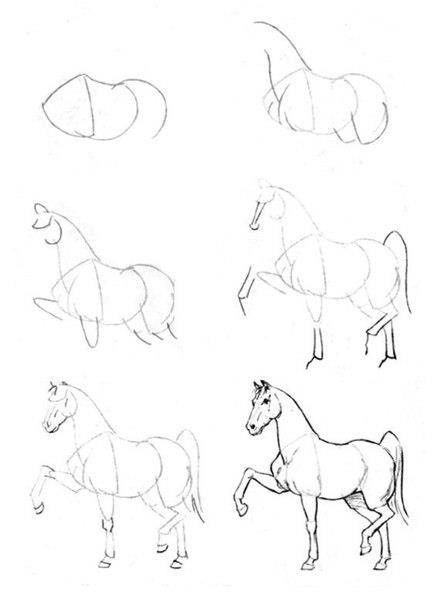 how to draw a horse easy canvas art prjects pinterest artă