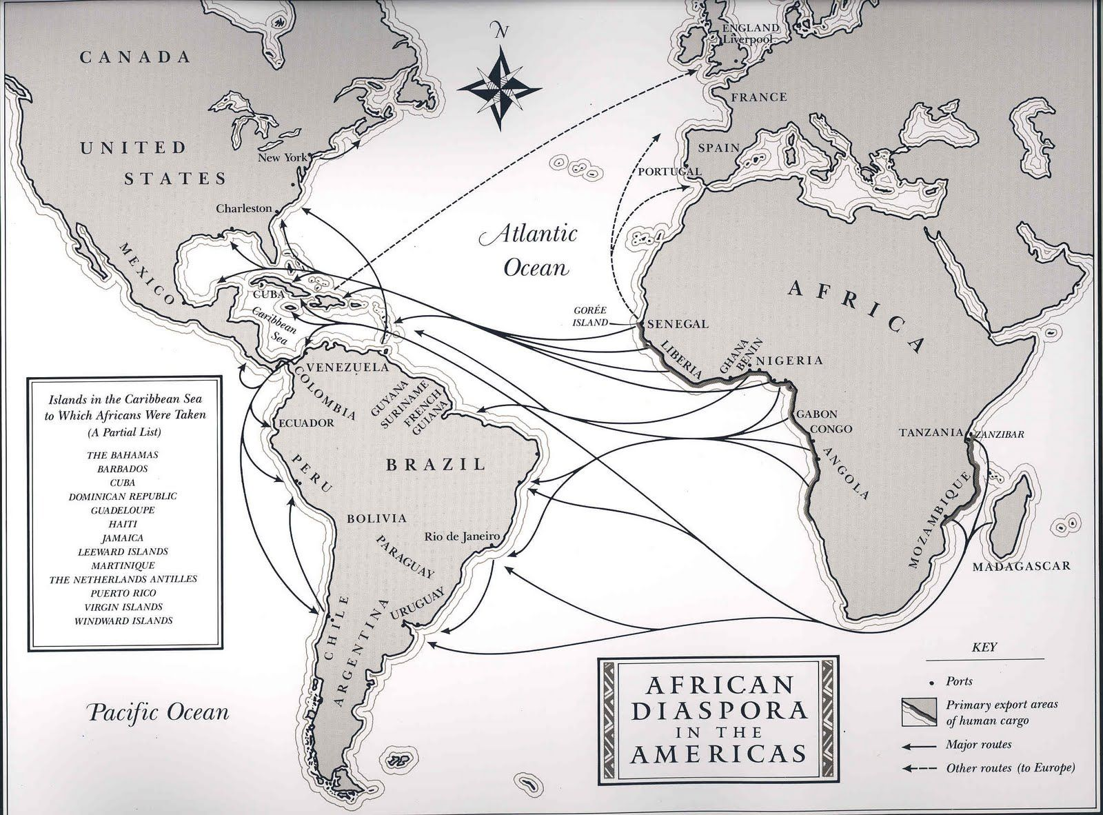 the middle passage NUBIAN KNIGHTS NETWORK The Middle