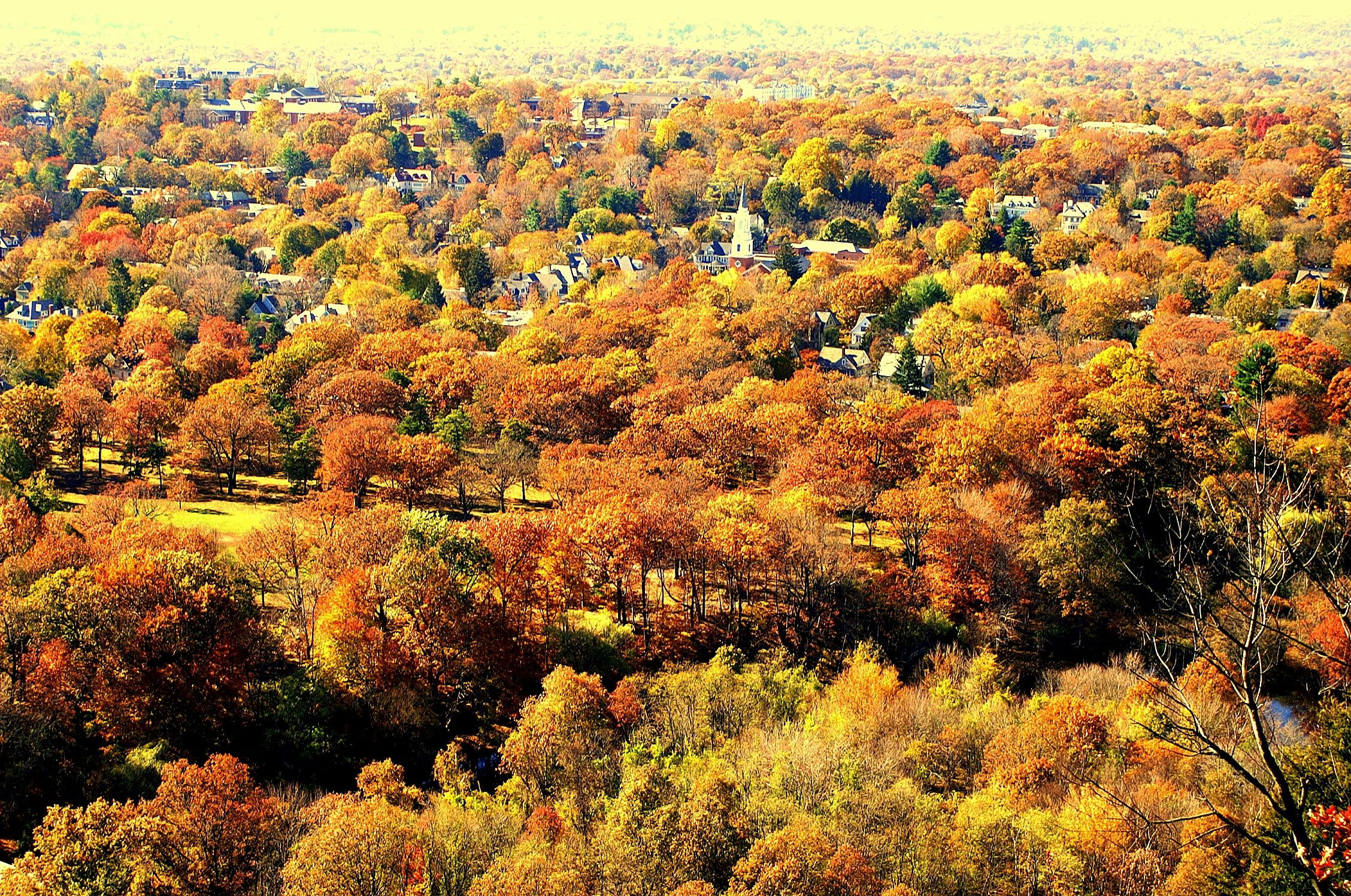 #FallinCT14  Center of CT photo contest New Haven from East Rock