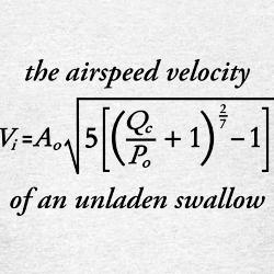 Airspeed velocity of a laden swallow