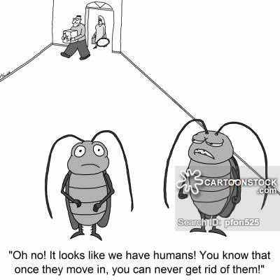 Pest Control Cartoons Google Search Pest Control Pest Control Humor Pests